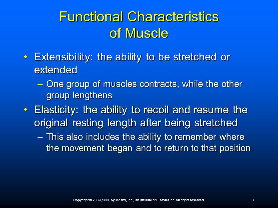 Functional Characteristics of Muscle