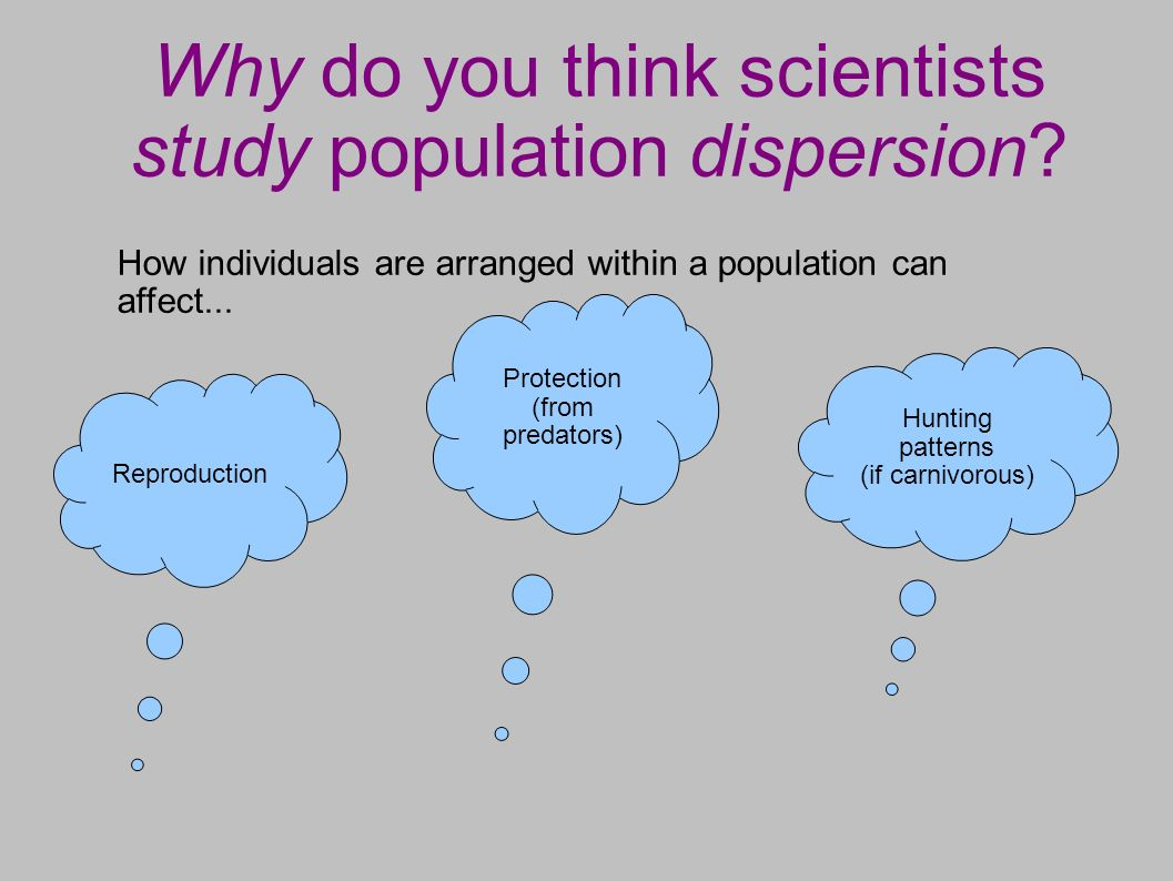 Why do you think scientists study population dispersion