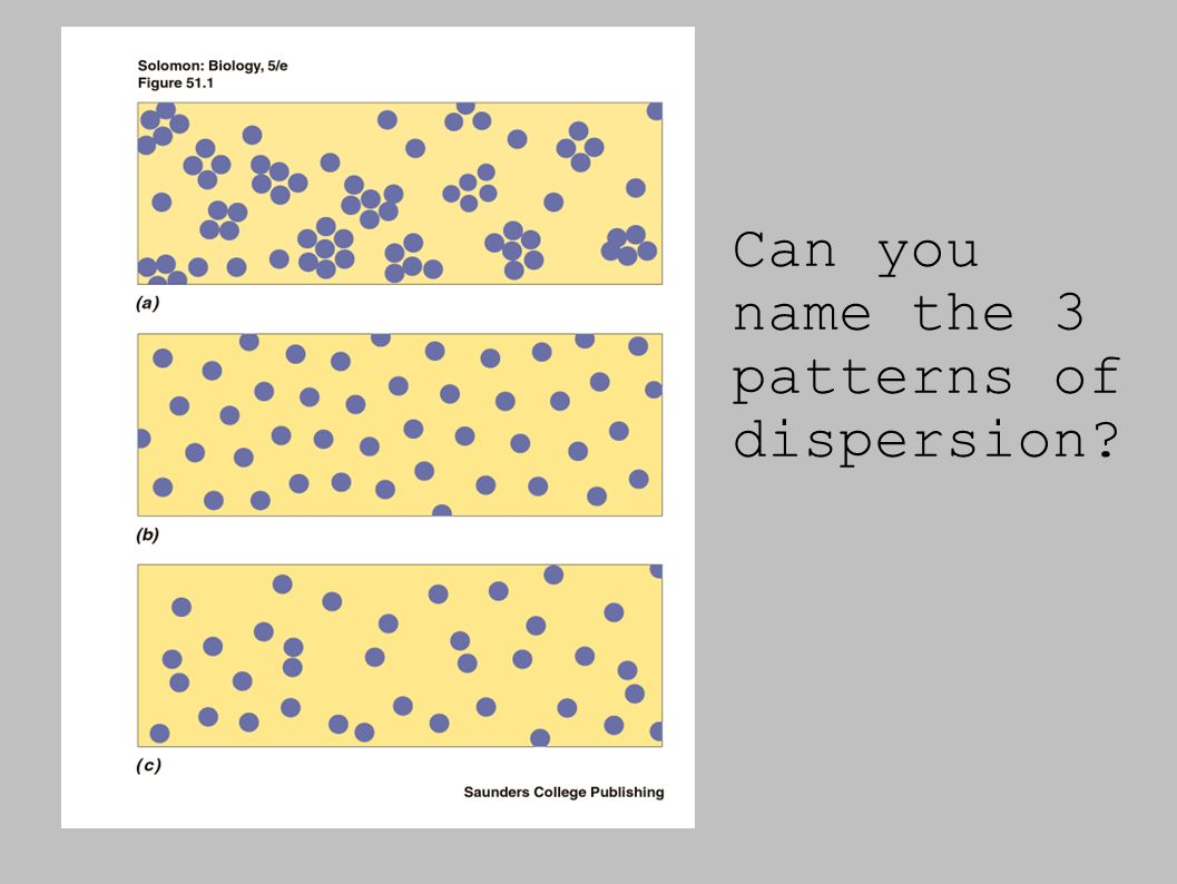 Can you name the 3 patterns of dispersion