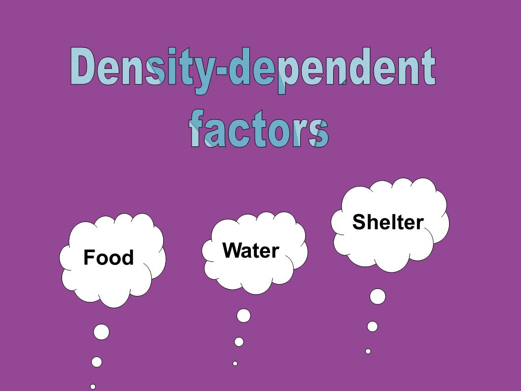 Density-dependent factors Shelter Food Water