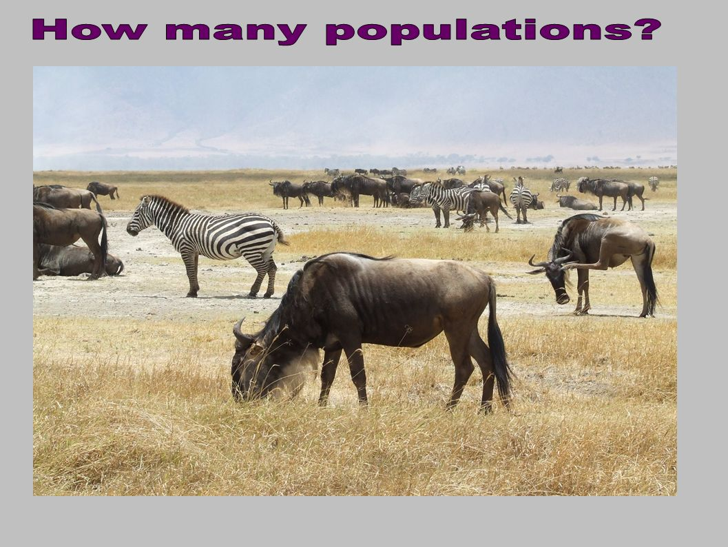 How many populations
