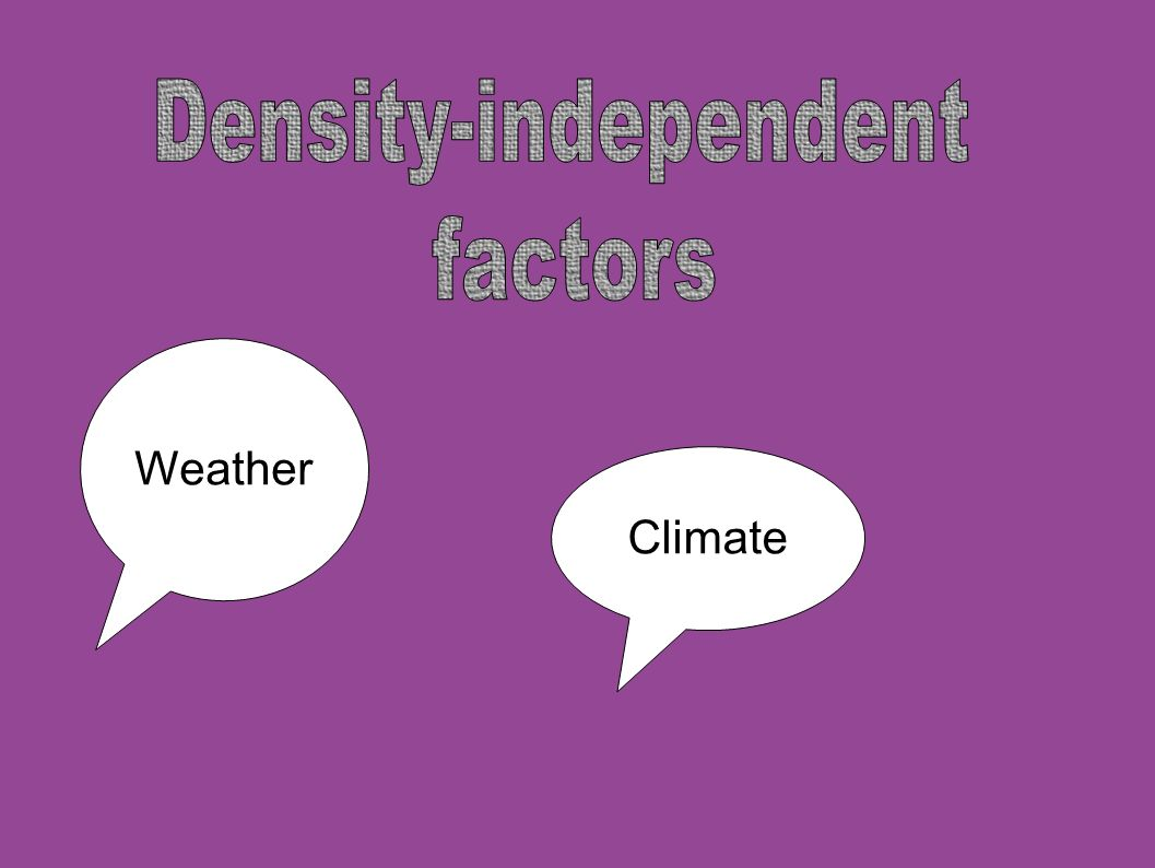 Density-independent factors Weather Climate