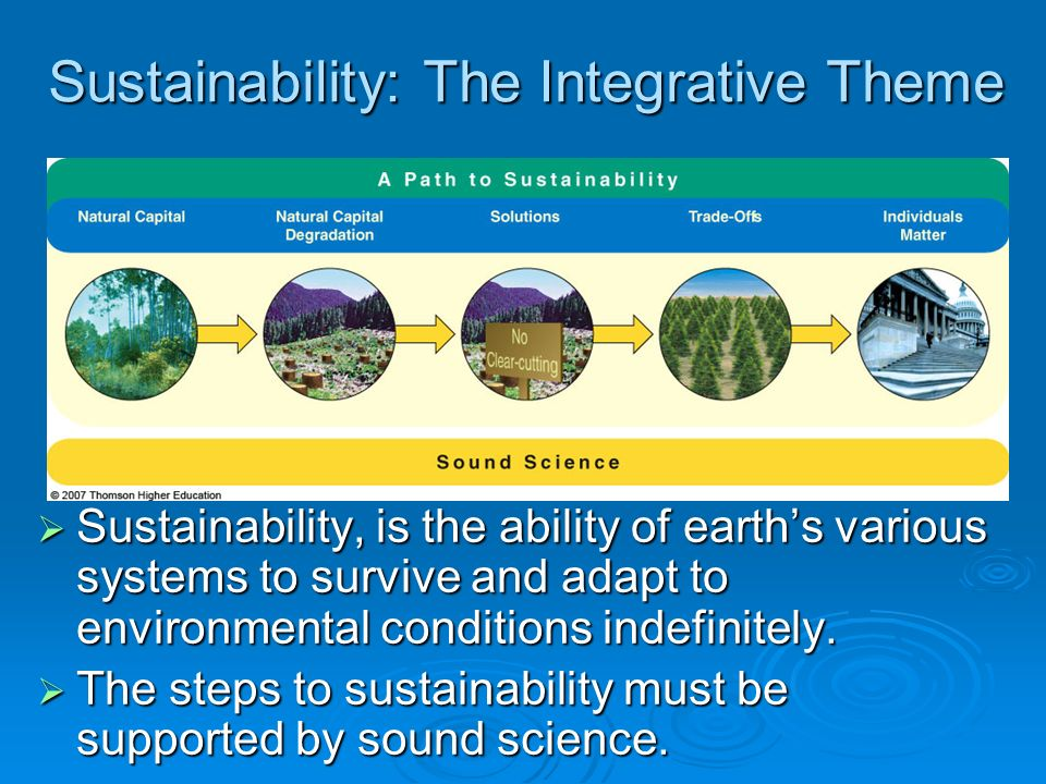 Sustainability: The Integrative Theme