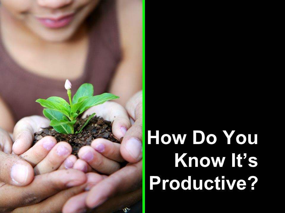 How Do You Know It's Productive
