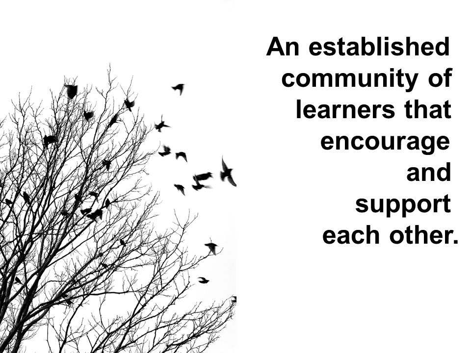 An established community of learners that encourage and support each other.