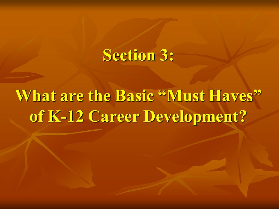 Section 3: What are the Basic Must Haves of K-12 Career Development