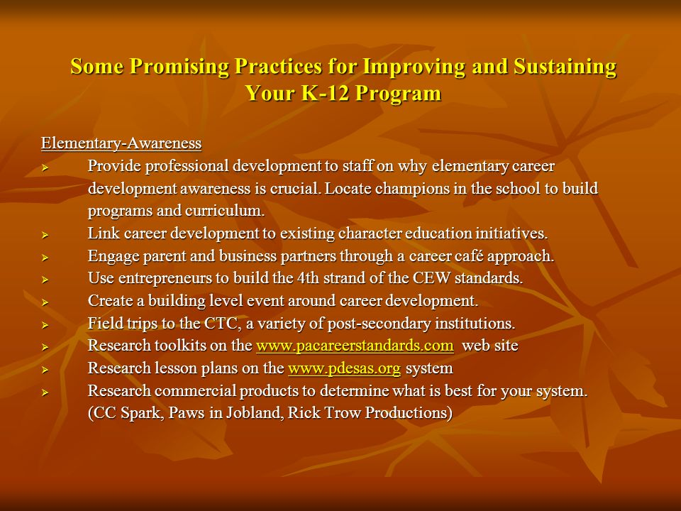 Some Promising Practices for Improving and Sustaining Your K-12 Program