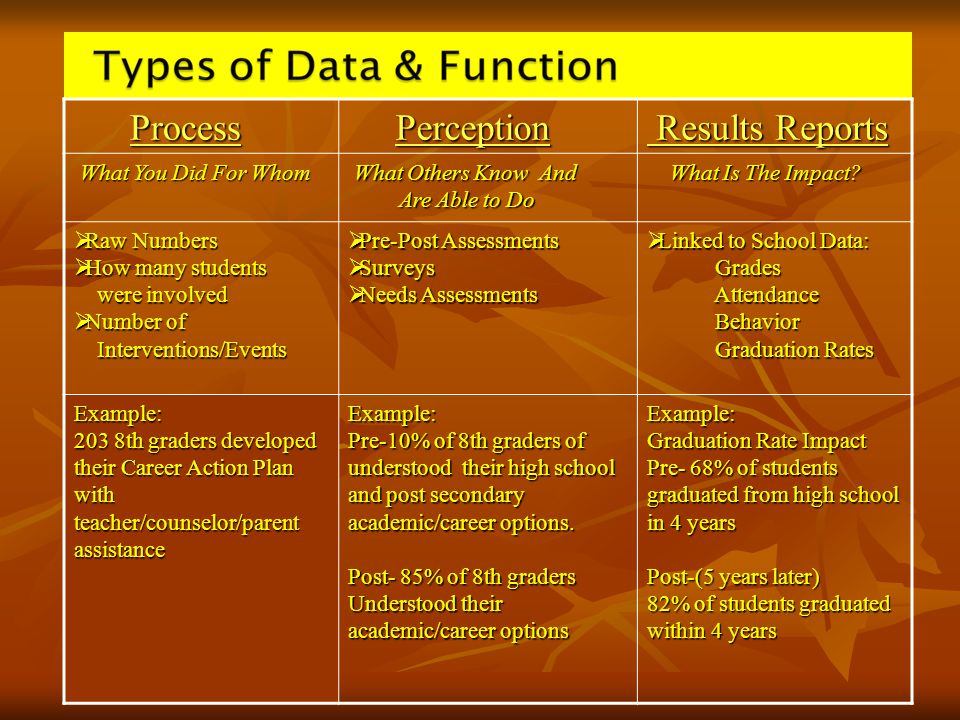 Process Perception Results Reports What You Did For Whom