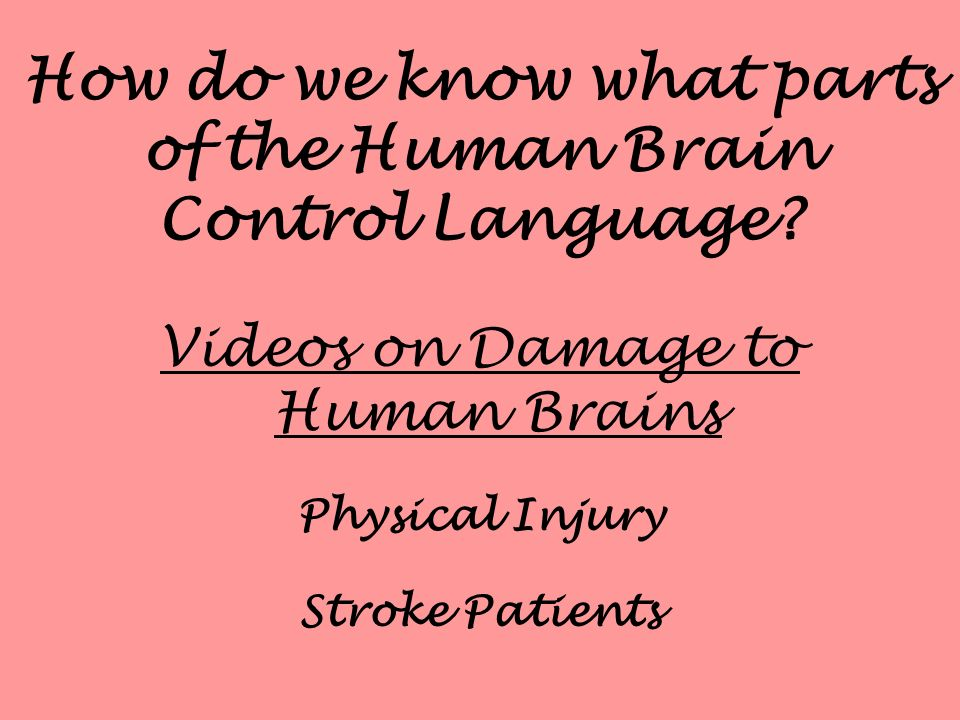 How do we know what parts of the Human Brain Control Language