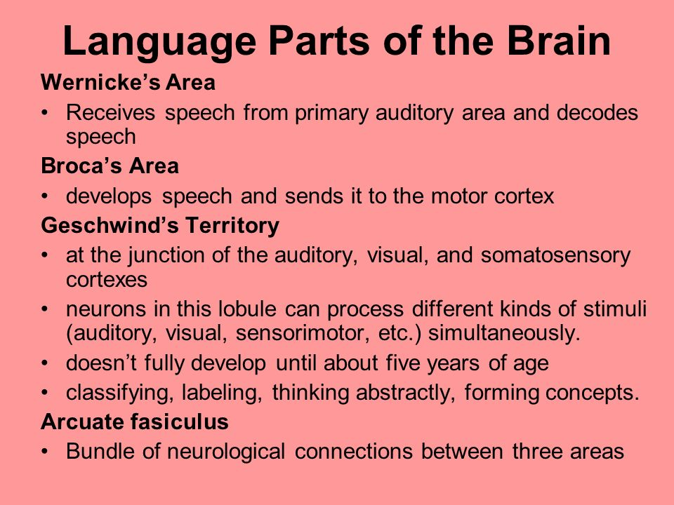 Language Parts of the Brain