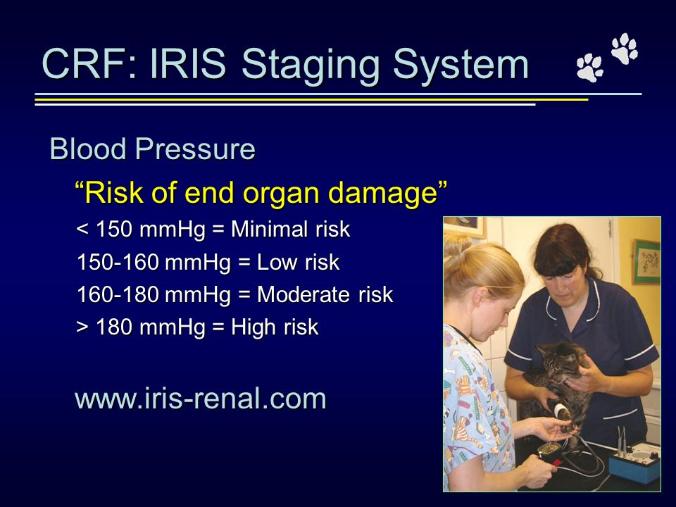 CRF: IRIS Staging System
