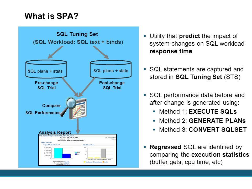 (SQL Workload: SQL text + binds)