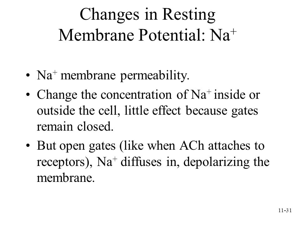 Changes in Resting Membrane Potential: Na+