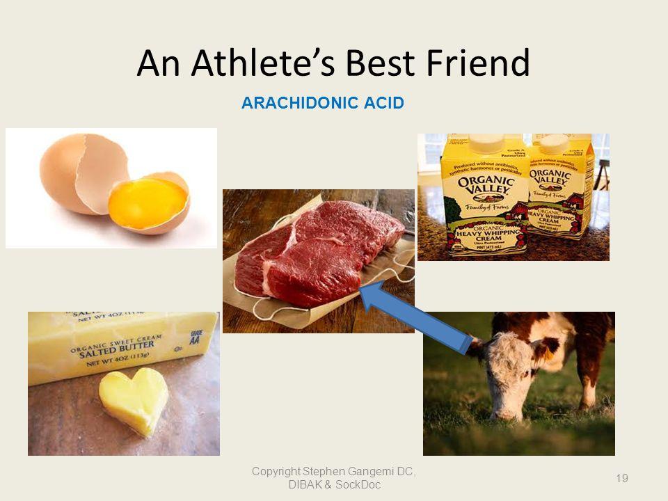 An Athlete's Best Friend
