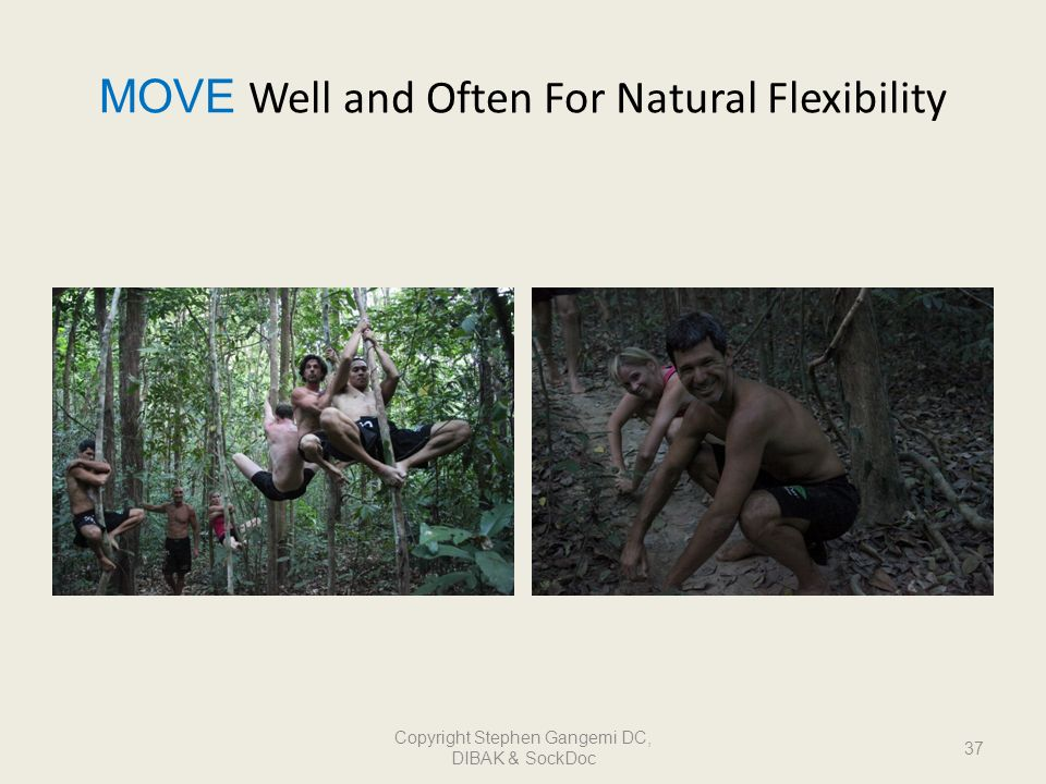 MOVE Well and Often For Natural Flexibility