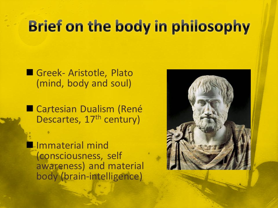 Brief on the body in philosophy