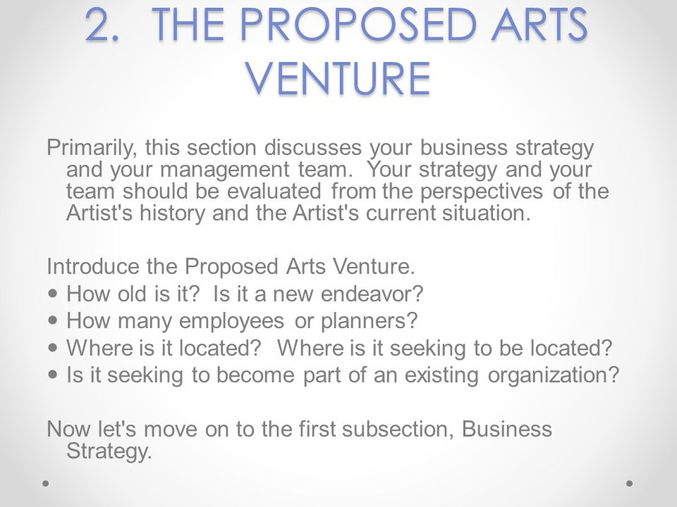 2. THE PROPOSED ARTS VENTURE