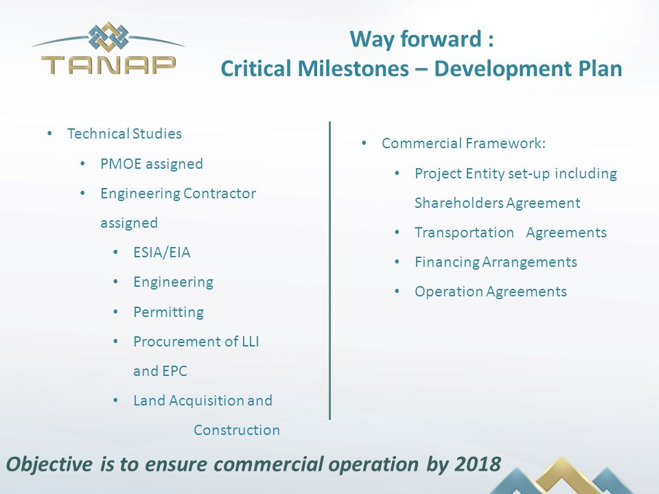 Way forward : Critical Milestones – Development Plan
