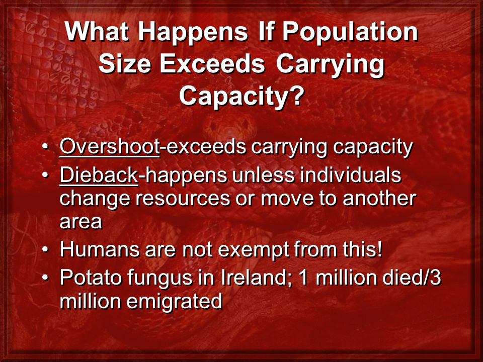 What Happens If Population Size Exceeds Carrying Capacity