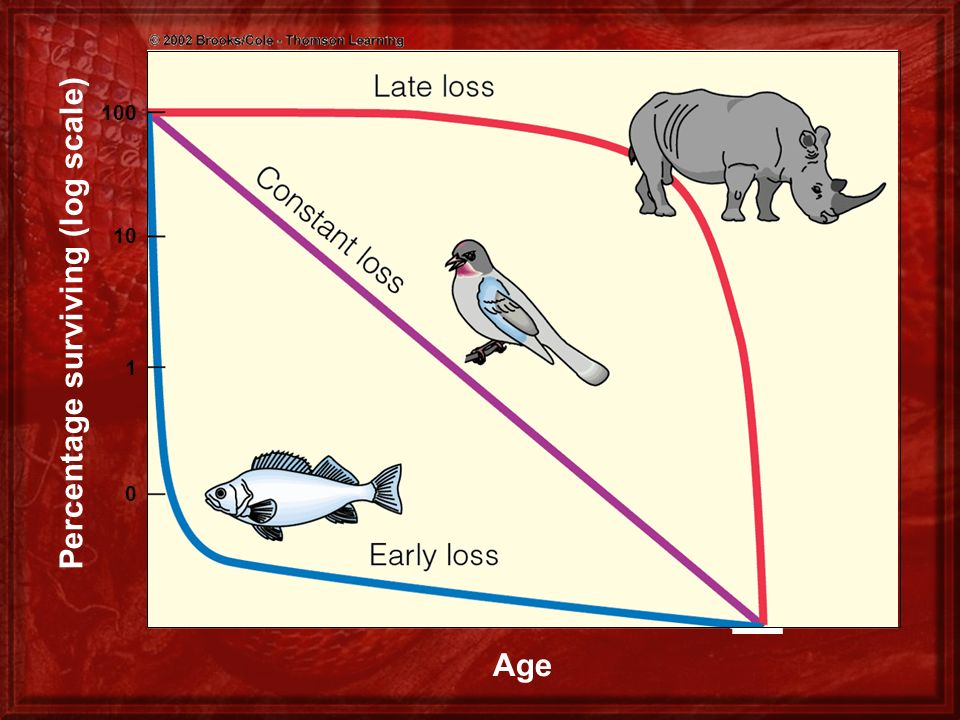Percentage surviving (log scale)