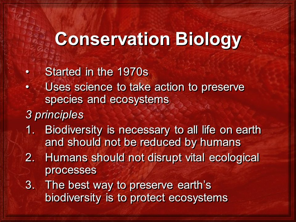 Conservation Biology Started in the 1970s