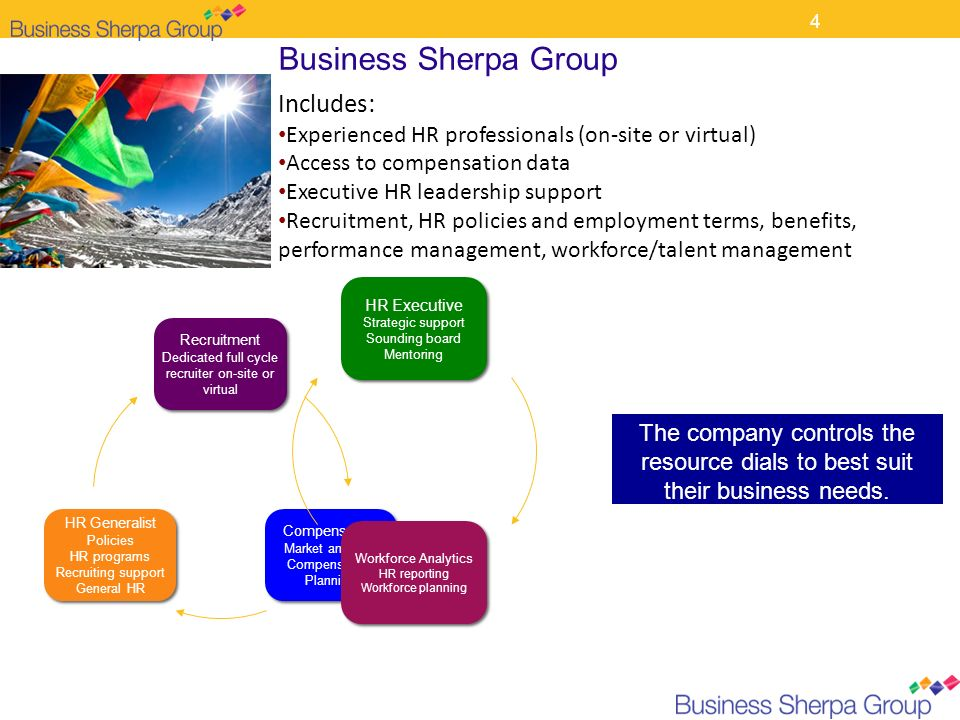 Business Sherpa Group Includes: