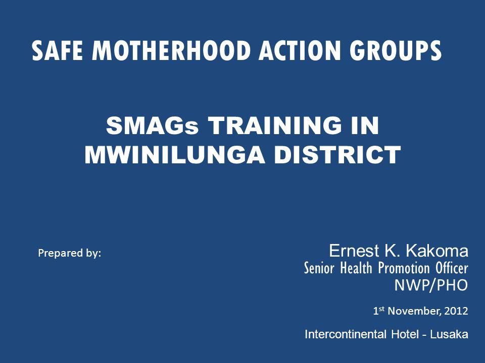 SAFE MOTHERHOOD ACTION GROUPS