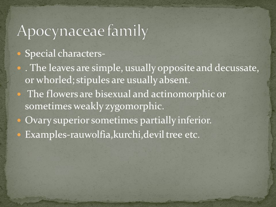 Apocynaceae family Special characters-