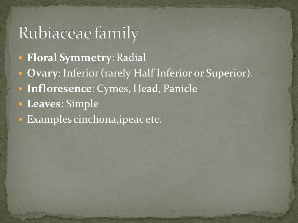 Rubiaceae family Floral Symmetry: Radial