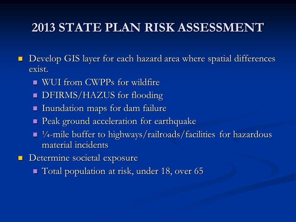 2013 STATE PLAN RISK ASSESSMENT