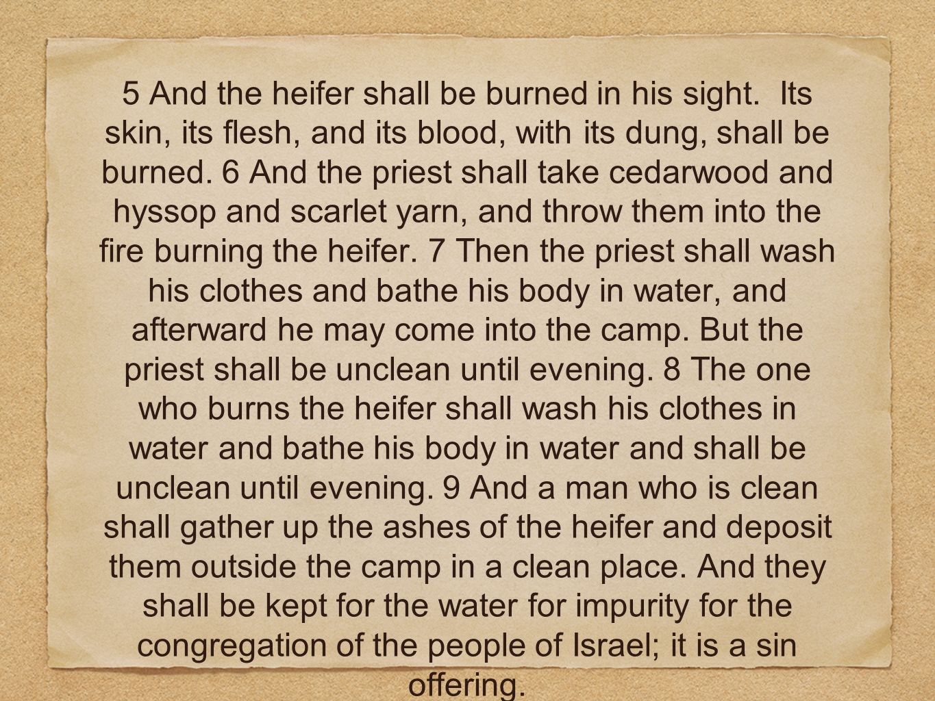 5 And the heifer shall be burned in his sight