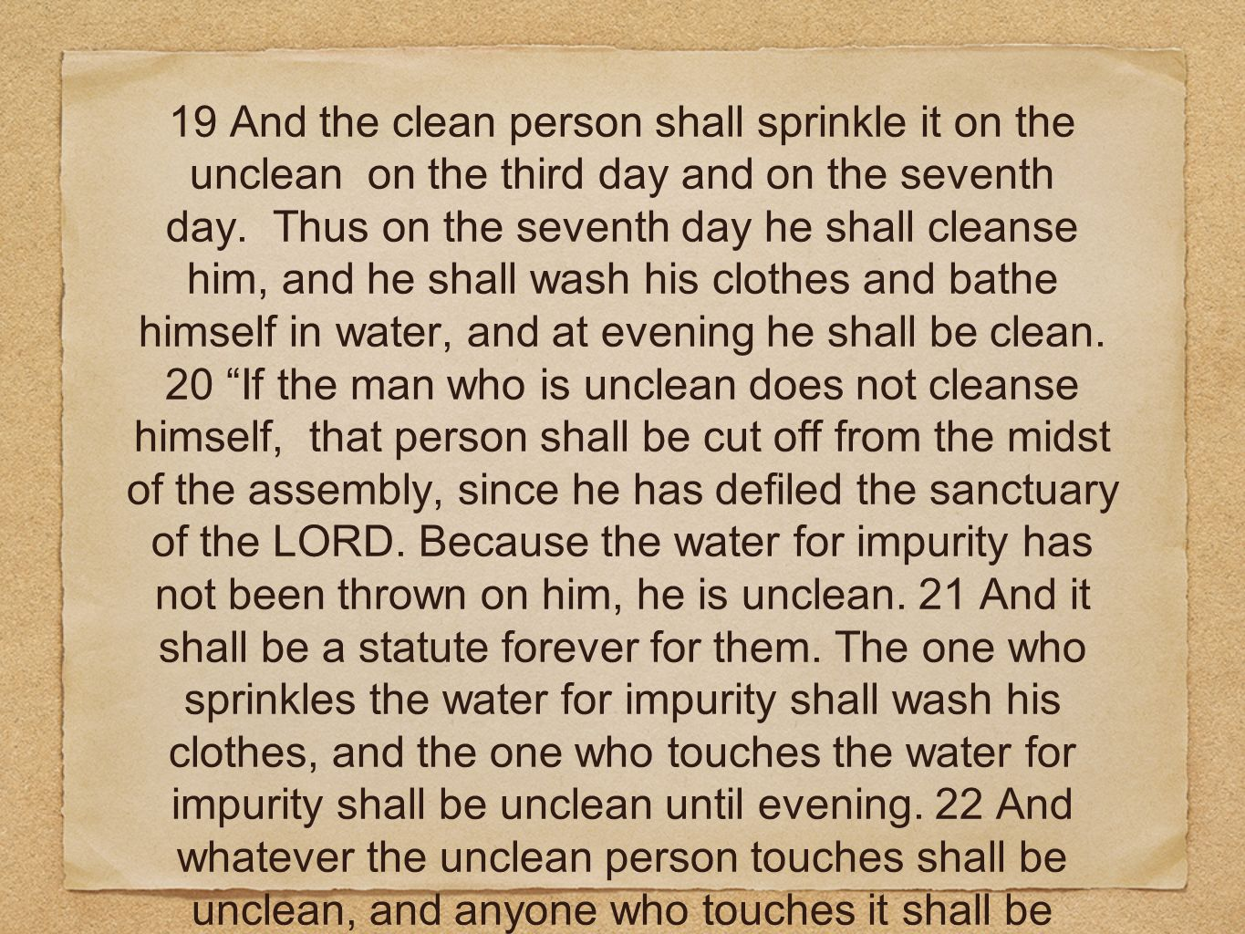 19 And the clean person shall sprinkle it on the unclean on the third day and on the seventh day.