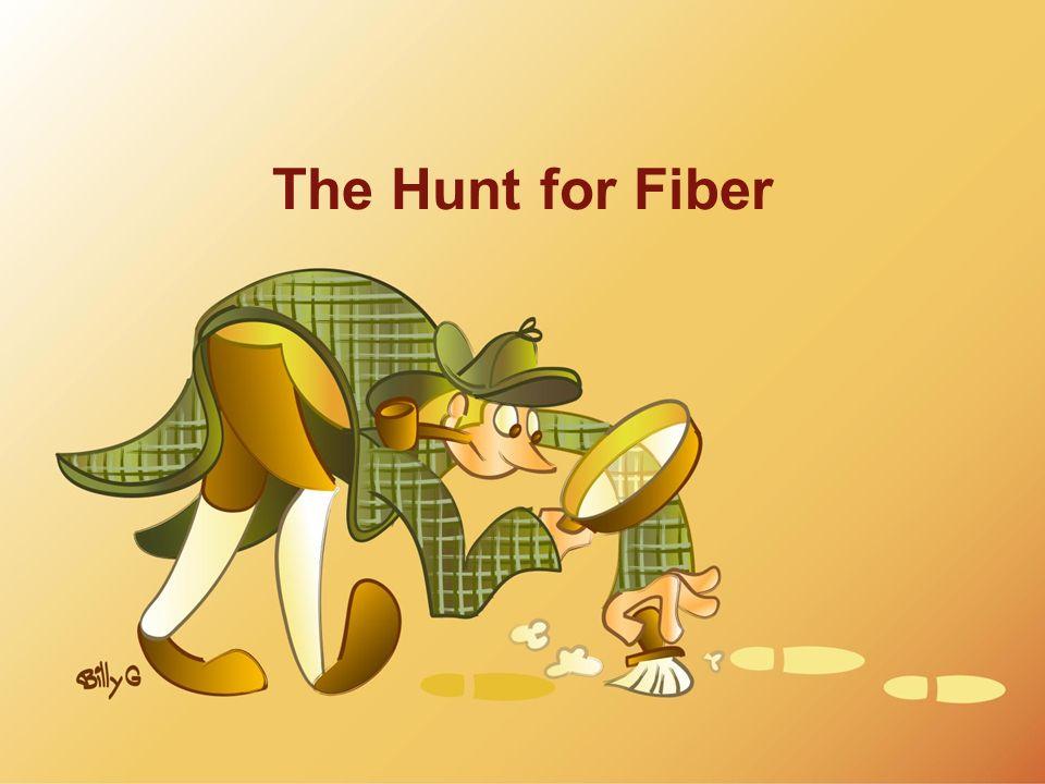 The Hunt for Fiber