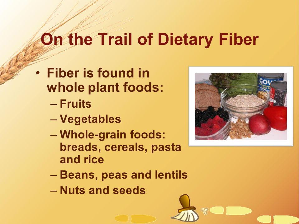 On the Trail of Dietary Fiber