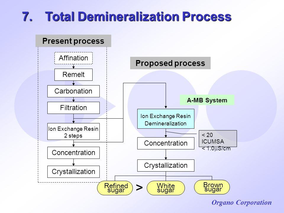 7. Total Demineralization Process