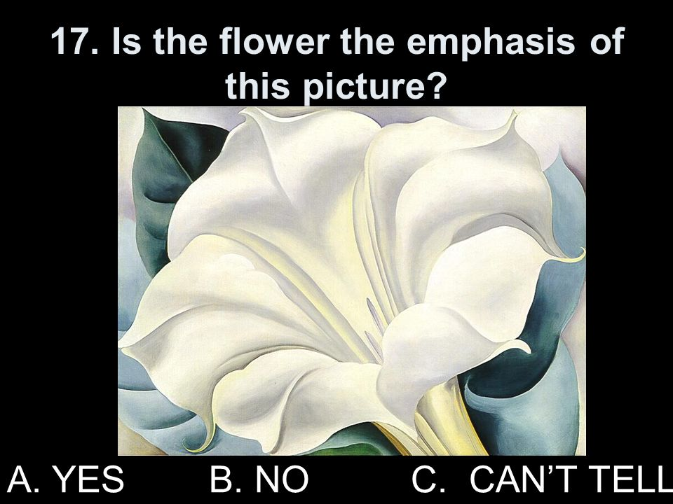 17. Is the flower the emphasis of this picture
