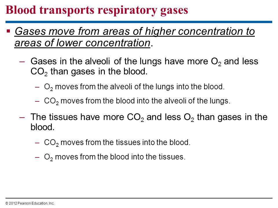Blood transports respiratory gases