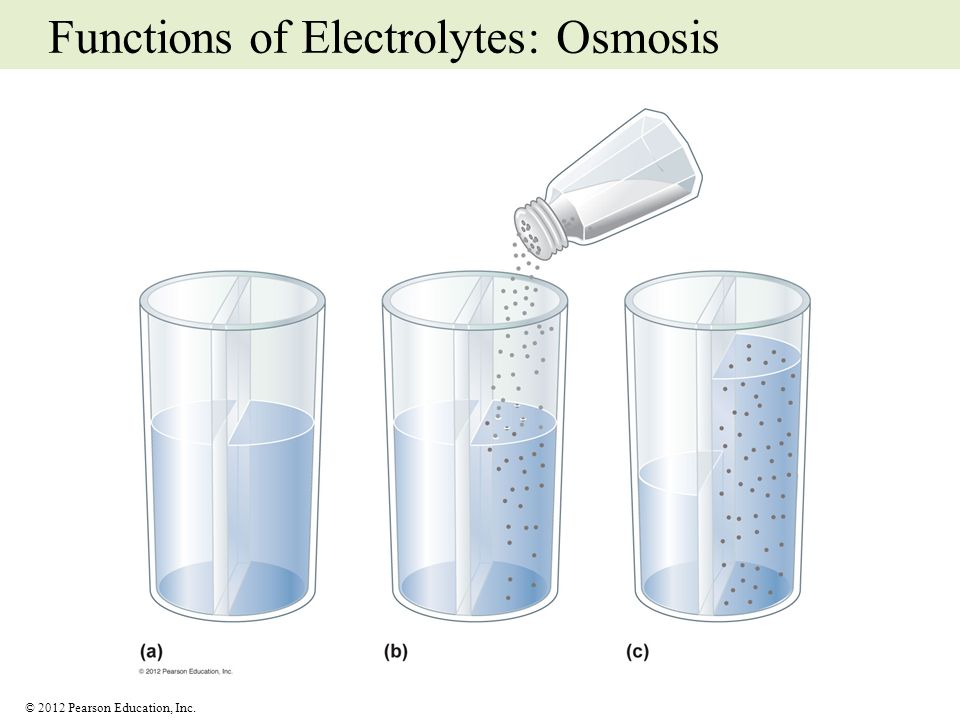 Functions of Electrolytes: Osmosis