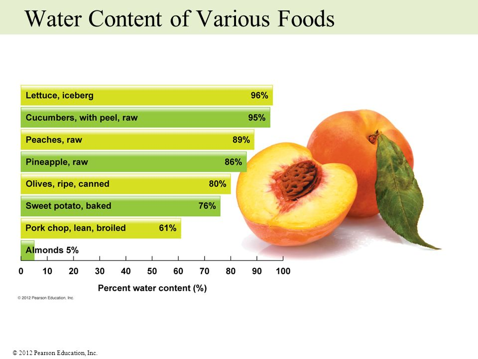 Water Content of Various Foods