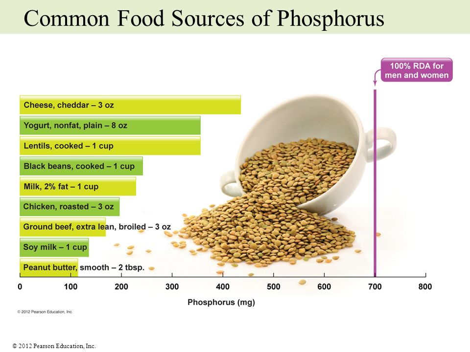 Common Food Sources of Phosphorus