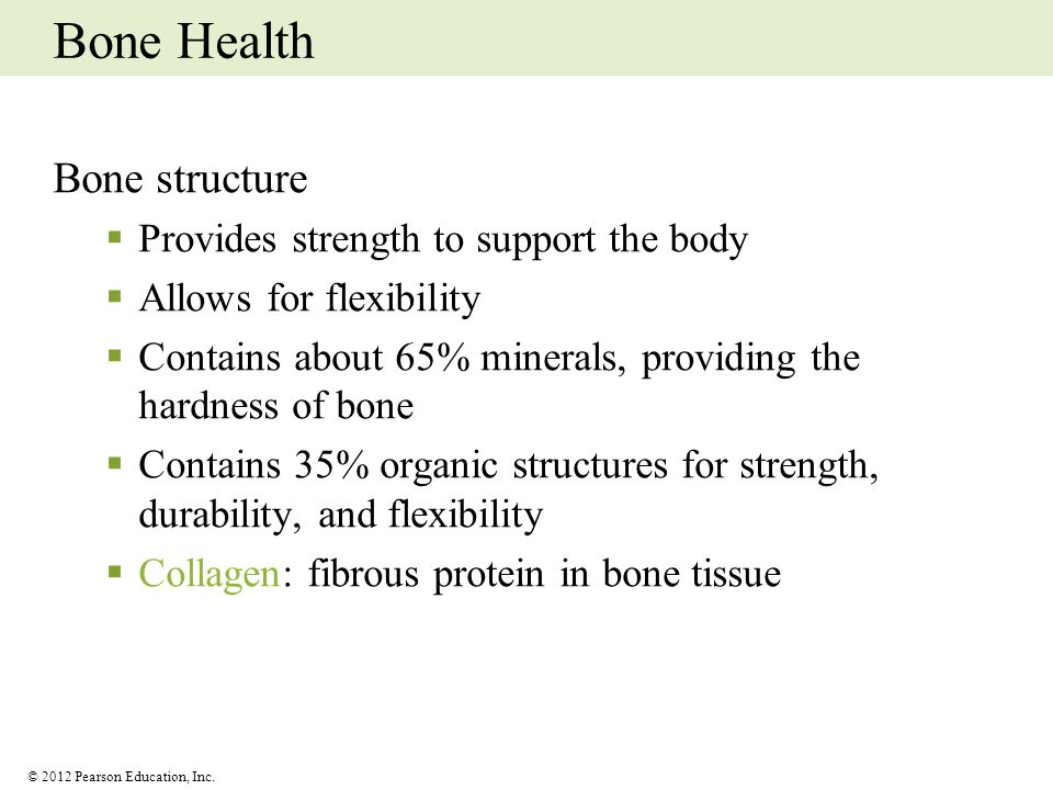 Bone Health Bone structure Provides strength to support the body