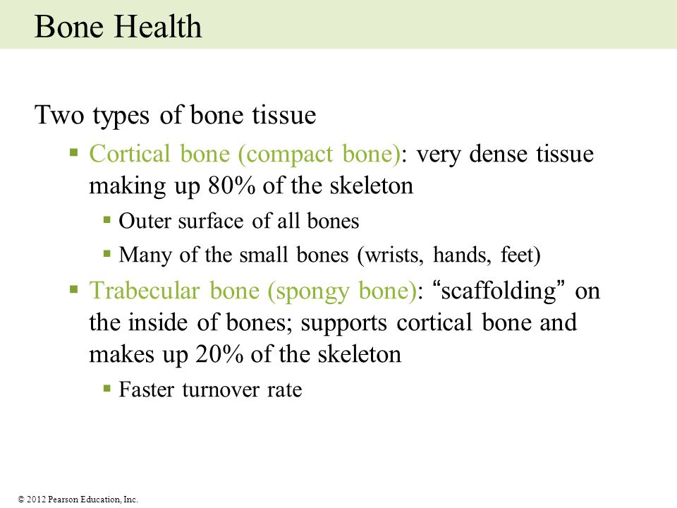 Bone Health Two types of bone tissue