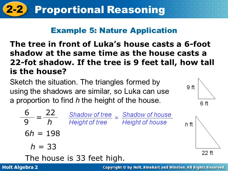 Example 5: Nature Application