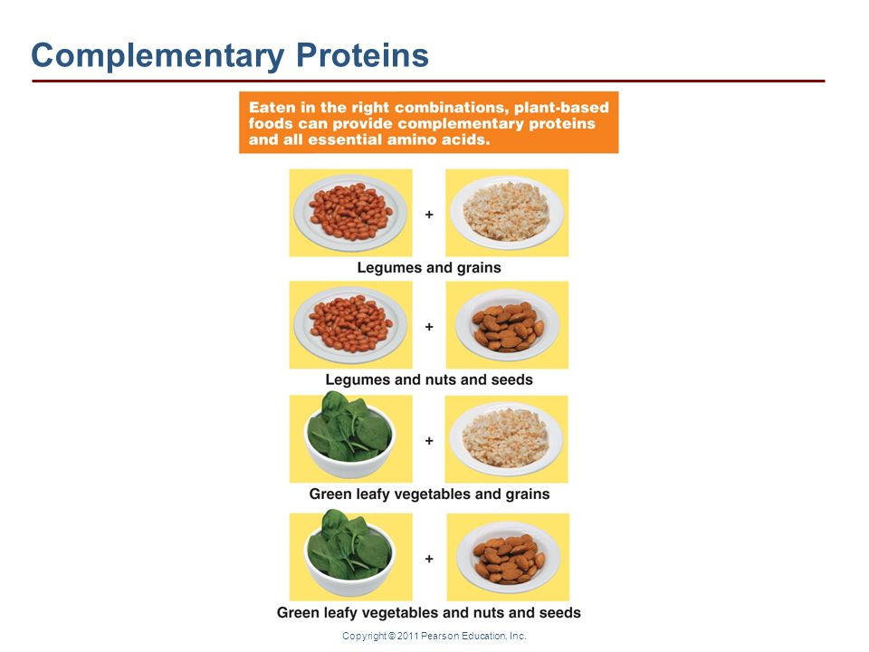 Complementary Proteins
