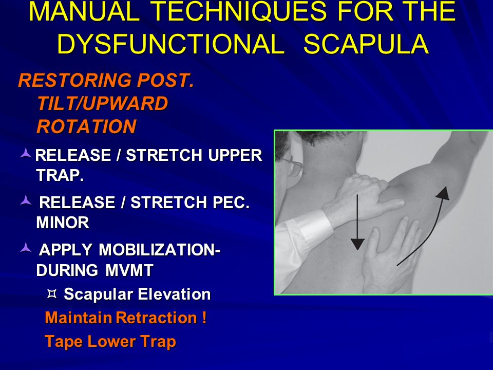 MANUAL TECHNIQUES FOR THE DYSFUNCTIONAL SCAPULA