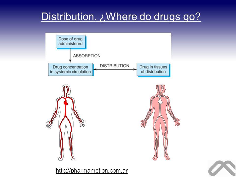 Distribution. ¿Where do drugs go