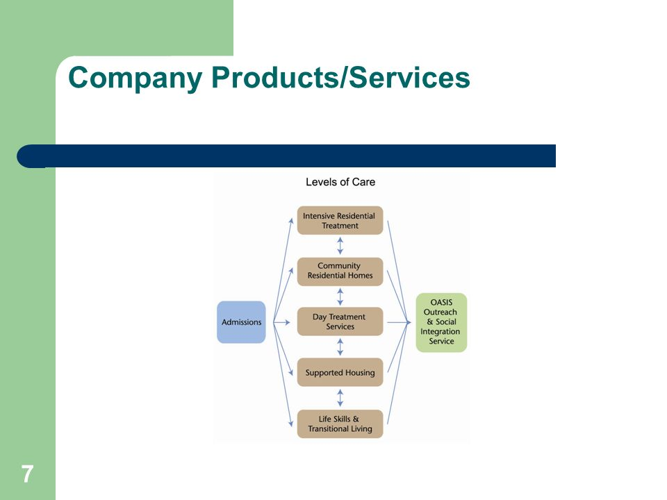 Company Products/Services