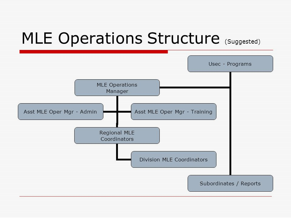 MLE Operations Structure (Suggested)