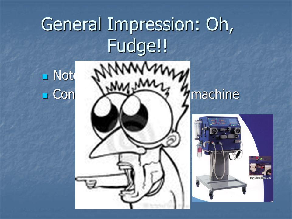 General Impression: Oh, Fudge!!