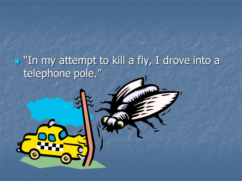 In my attempt to kill a fly, I drove into a telephone pole.